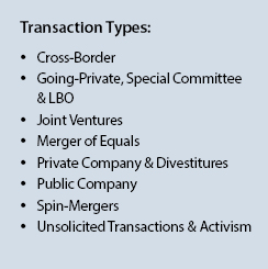 M&A Financial Advisory Transaction Types