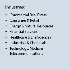 M&A Financial Advisory Industries